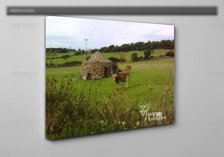 canvas quadro tela stampa personalizzata sardegna